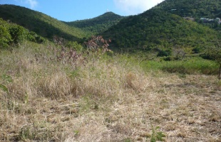 Land, For sale, Listing ID 3021, St. Maarten,